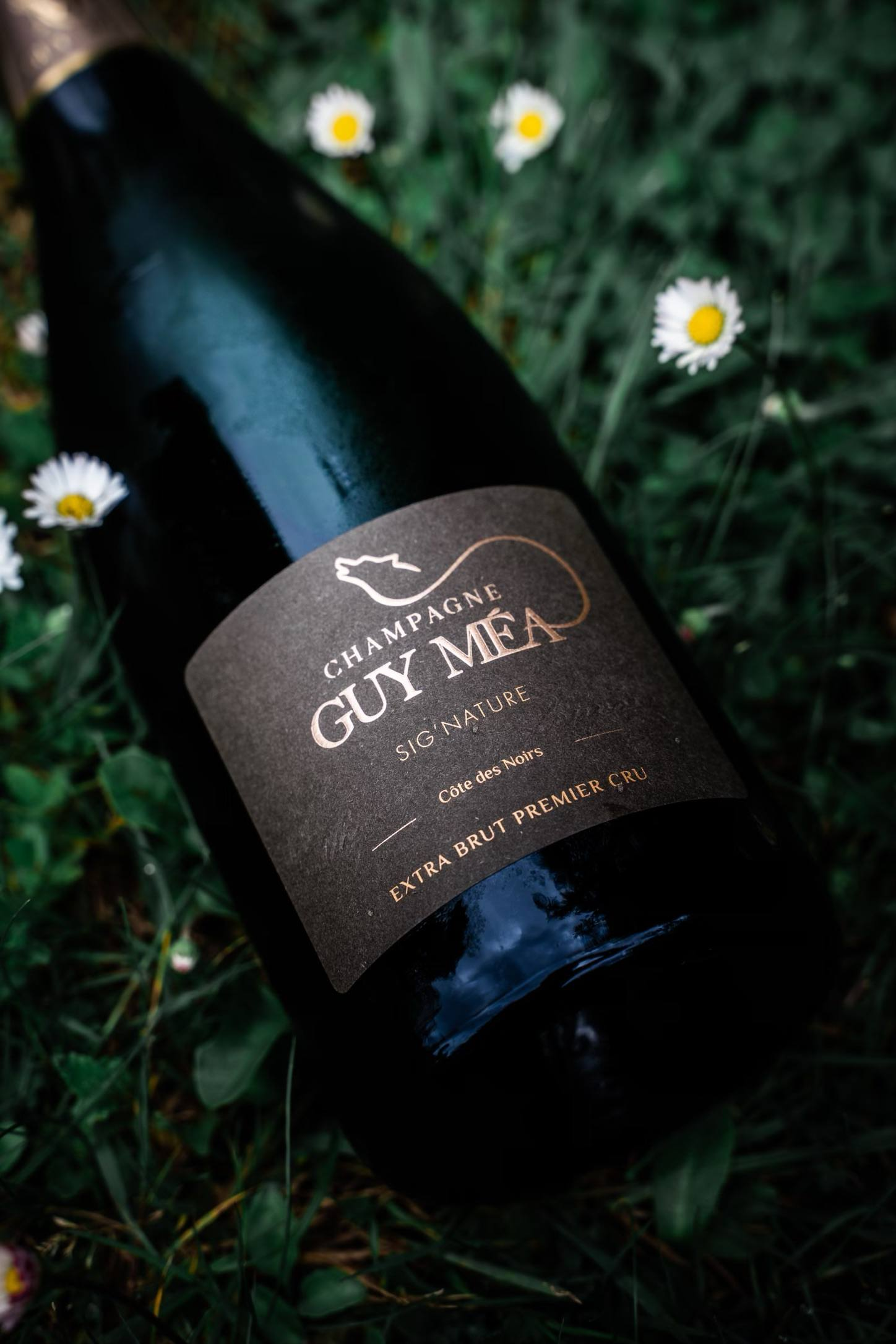 Sig'nature - Champagne Guy Mea